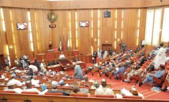Citing irregularities in Buhari's ambassadorial list, senate summons Onyeama, SGF