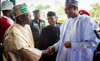 Tinubu: I can swear Buhari will NOT steal