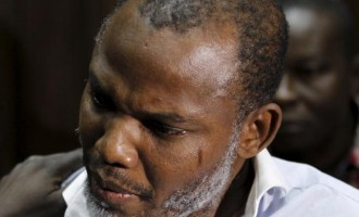 Kanu: There'll be no Nigeria again by the time I finish my testimony