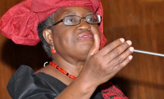 Okonjo-Iweala knocks 'mischief makers', denies deriding Amaechi, Fashola