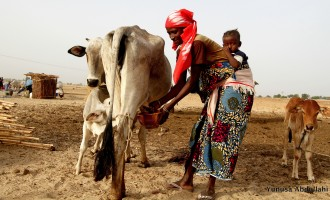 Nigeria: World's 20th 'worst country' for women!