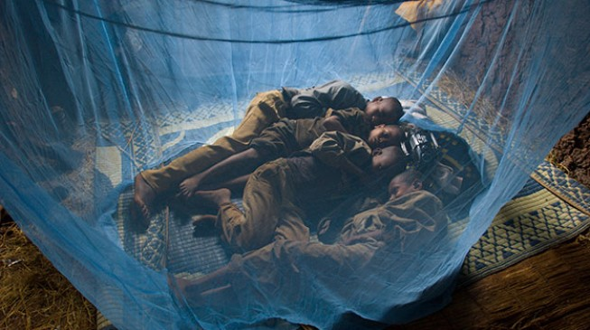Despite restriction on antimalarial resistant drugs – they are still used to treat malaria
