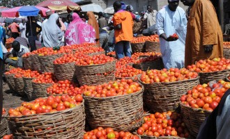 After 3 yrs, army re-opens Maimalari cantonment market