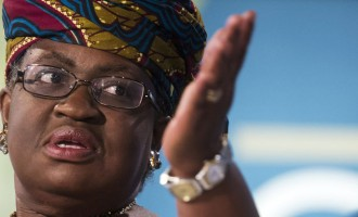 Okonjo-Iweala: I'm not running in 2019 with Atiku or anyone else
