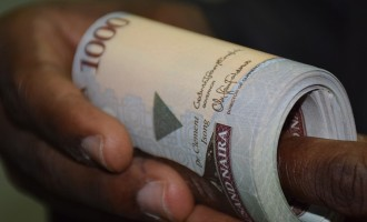 Naira bounces back after days in 'recession'