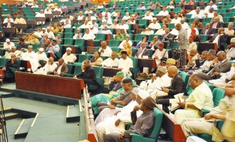 Reps to minister: With or without your input, we'll establish FCT satellite agency
