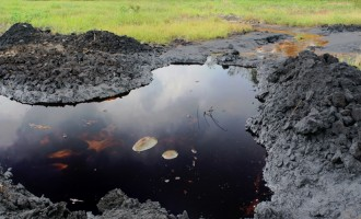 Bayelsa community sues ENI, demands compensation for oil spill