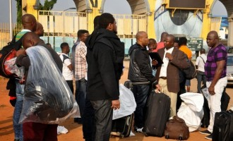 43 Nigerians deported from three European countries