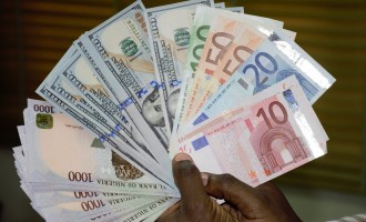 Naira stable as forex reserves continue on 5-day free fall