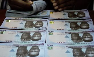Intelligent work led to appreciation of naira, says CBN