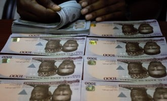 Naira firms as NSE gains N417bn in six hours — crosses N11trn