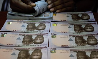 Naira may firm to 321/$1 as CBN authorises forex sale to BDCs