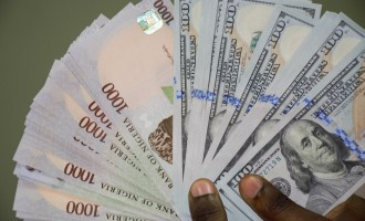 Naira strengthens to N450/$1 as CBN pumps in more dollars