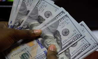 Will July's US jobs report rescue the dollar?