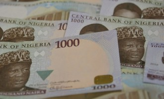 From 13.79% in April, FG raises savings bond interest to 14.53%