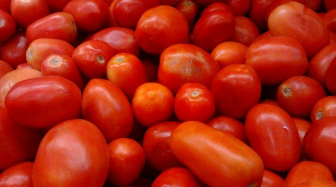 WHEN BIG IS BAD: 5,000 farmers not enough to supply tomato to Dangote's factory