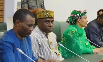 South-south cannot intimidate Nigeria, says Amaechi