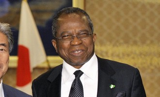 Ojo Maduekwe: The politician as a thinker