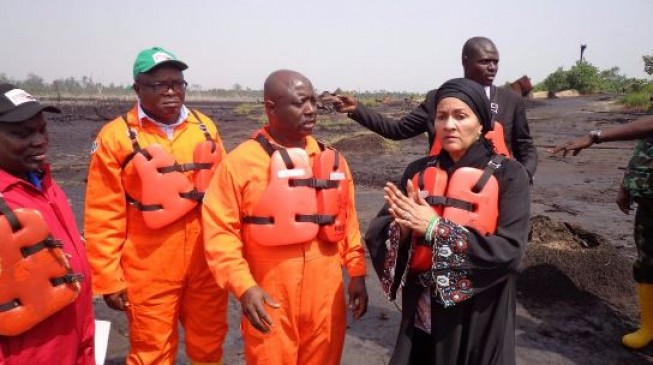 Environment minister calls for patience over pace of Ogoni cleanup