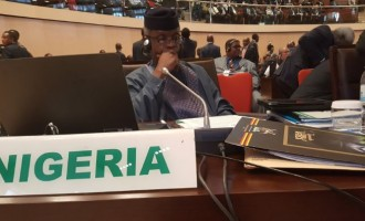 Ethnic appointments and 5 other reasons Nigeria is underperforming – according to Osinbajo