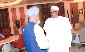 After criticising Buhari, Soyinka apologises for 'miscommunication'