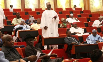 Melaye: Those who know me know that I'm a private investigator and whistle-blower