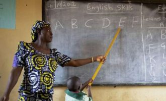 Kaduna finalises plan to replace teachers who failed primary four test