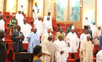 Senate charts framework for speedy AMCON debt recovery