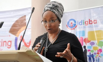 Maryam Uwais: No govt has invested in people like Buhari's
