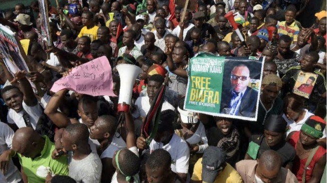 IPOB: Parable of the stubborn fly