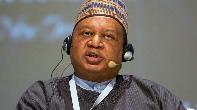 We must not lose sight of our goal, Barkindo tells oil producing nations
