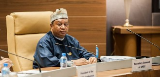 Barkindo welcomes new Saudi prince to OPEC