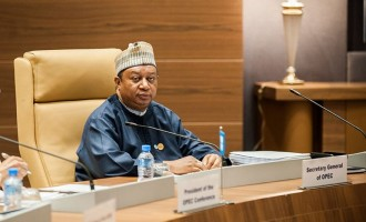 Barkindo in Washington to talk US into OPEC deals