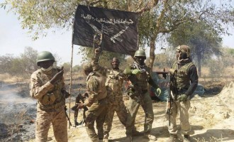Fruitless hunt for Boko Haram