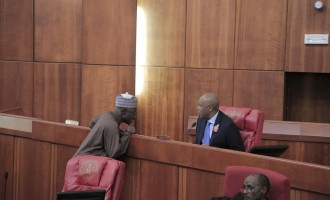 Soon, it will be legal for senators to insert constituency projects into budgets