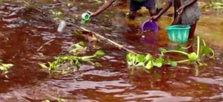 Amnesty 'uncovers' serious negligence by Shell, Eni in Niger Delta oil spills
