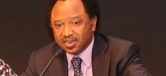 Shehu Sani: FG should be humble enough to apologise to Atiku