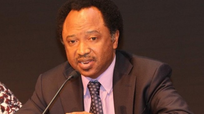 Shehu Sani: APC doomed if Tinubu 'rescue mission' flops