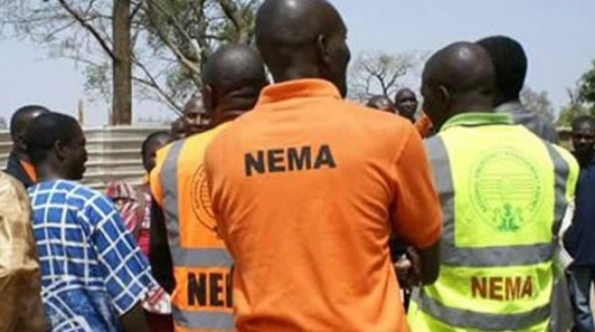 Boko Haram kills NEMA official in Borno