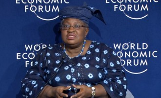 Okonjo-Iweala: Trump will let Africa shape its own destiny