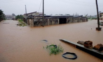 Rainstorm destroys '150 houses' in Kano