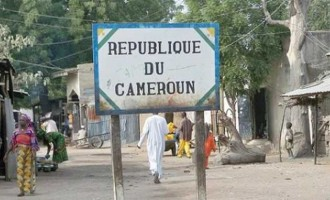 FG to carry out voluntary repatriation of 91,000 Nigerians from Cameroon
