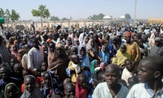 The food is good… we are not in haste to return home, say IDPs