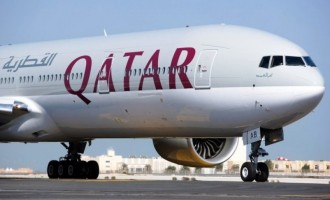 Doha-bound plane was affected by bird strike, says NCAA