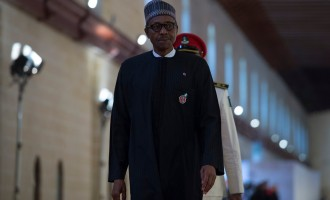 Buhari's return: Aso Rock agog… jubilation in Daura