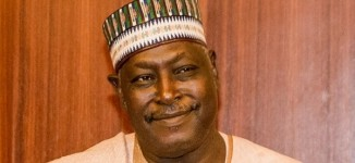 Sacked SGF: How I made N500m after I left government
