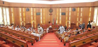 Not too young to run – senate's golden gift