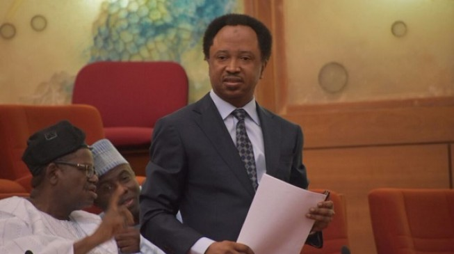 A mighty mortal has been caught, says Shehu Sani on SGF's suspension