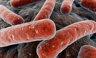 Scientists develop non-antibiotic drug for tuberculosis