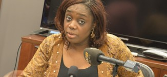 Adeosun: It may take 30 years to repay $5.5bn loan